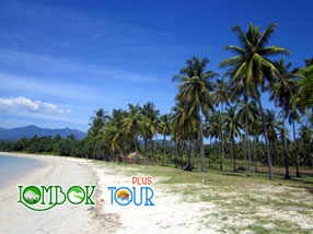 Menengok Keindahan Alam Pantai Sire Medana Lombok Yang Memukau