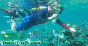 objek-wisata-snorkeling-gili-lombok