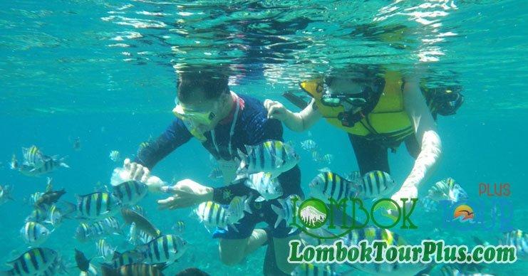 snorkeling di gili