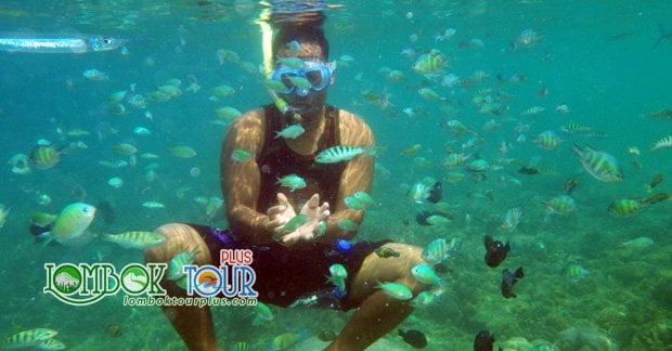 Wisata Private di Gili Sudak Lombok