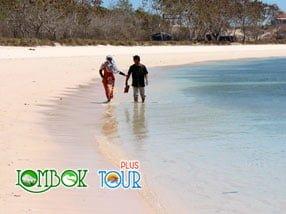 Pantai Pink Lombok Pantai Dengan Sejuta Keindahan