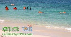 Snorkeling Menyenangkan di Gili Nanggu