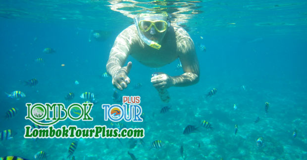 Snorkeling memuaskan wisata di Lombok