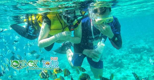 Destinasi Wisata Lombok Yang Memukau