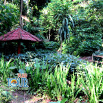 Eksotisme tempat wisata di lombok barat Yang Indah