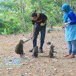 Ini Loh Pesona Objek Wisata Lombok Yang Harus Anda Kunjungi