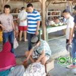 5 Objek Wisata Lombok Yang Menarik